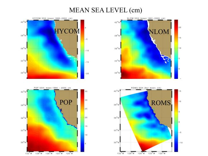 MEAN SEA LEVEL (cm)