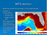 wfs domain