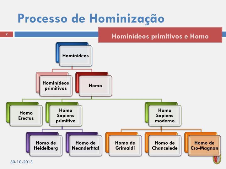Processo de Hominização