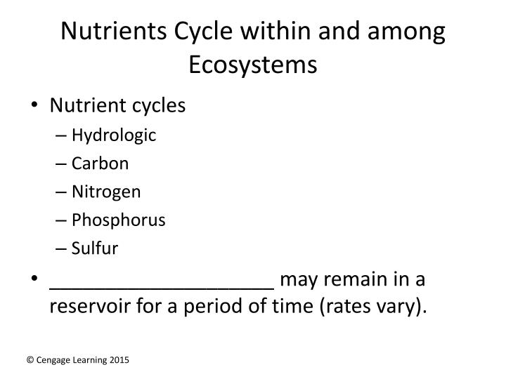 Nutrients cycle within and among ecosystems