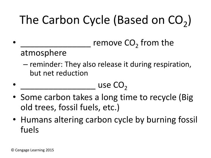 The Carbon Cycle (Based