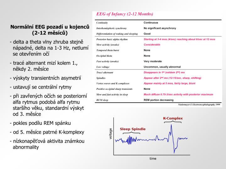 Normální EEG pozadí u