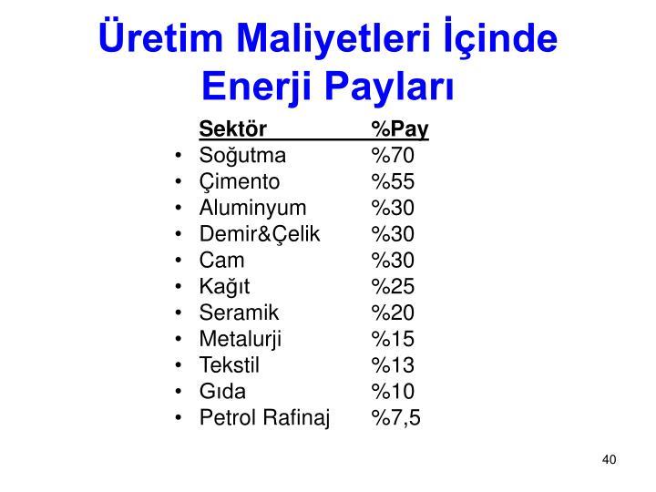 Üretim Maliyetleri İçinde Enerji Payları