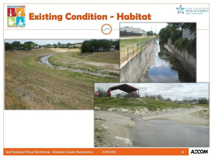 Existing Condition - Habitat