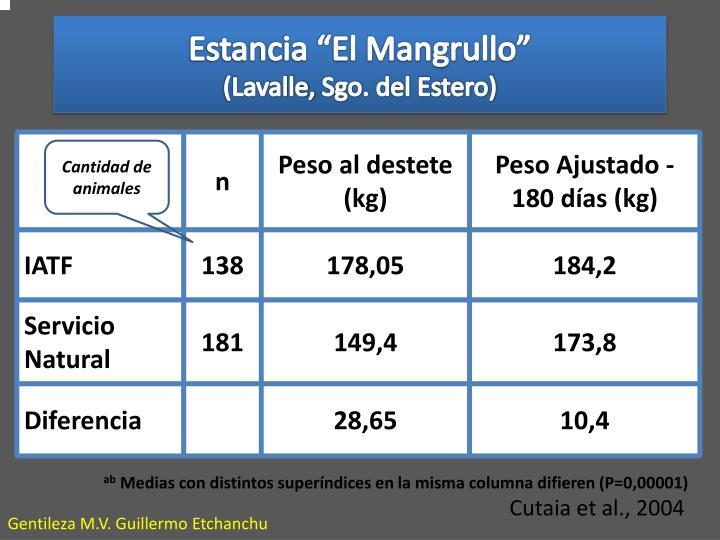 "Estancia ""El Mangrullo"""