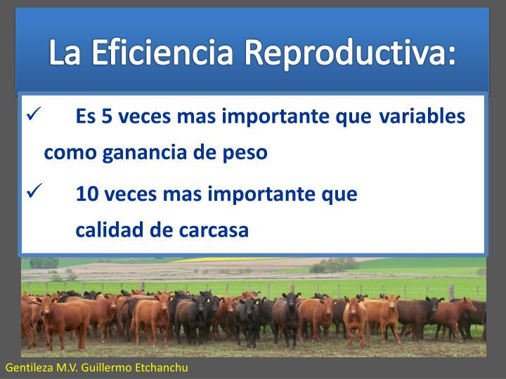 La Eficiencia Reproductiva: