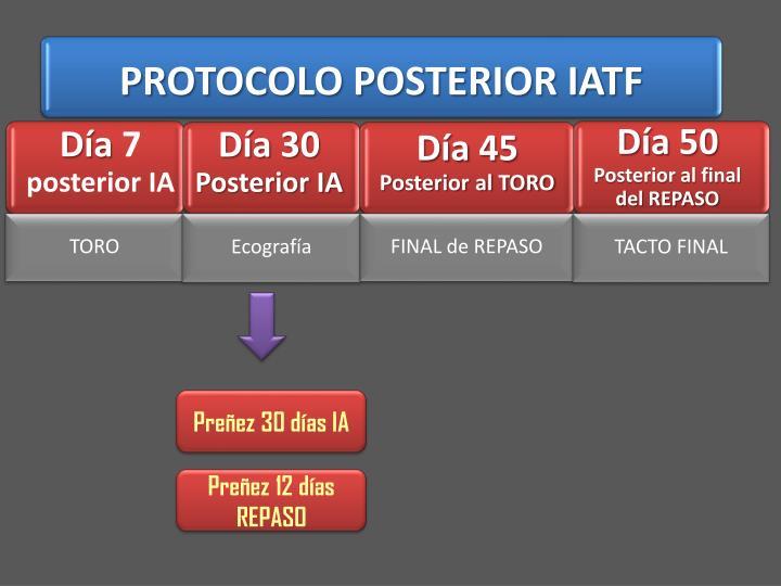 PROTOCOLO POSTERIOR IATF