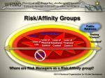 risk affinity groups