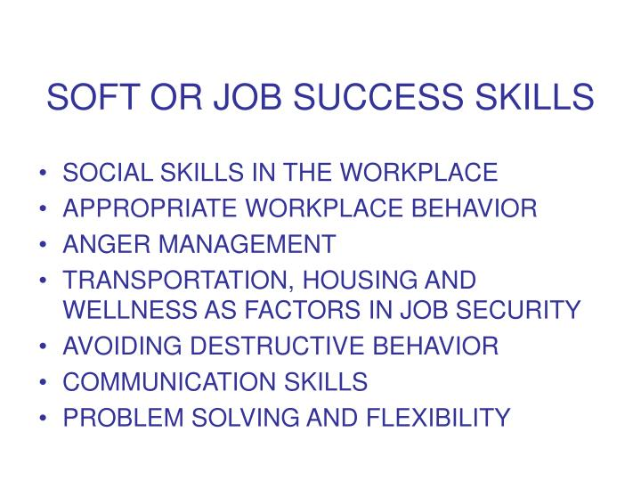 SOFT OR JOB SUCCESS SKILLS