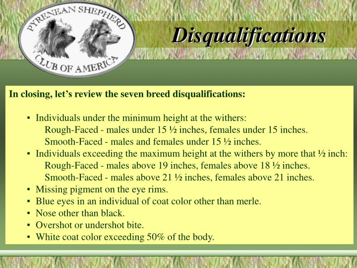 Disqualifications