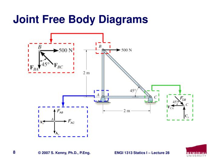 Joint Free Body Diagrams