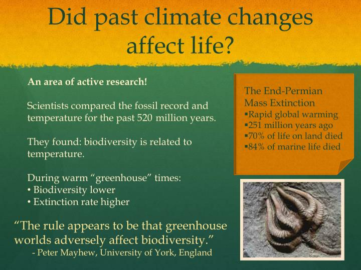 Did past climate changes affect life?