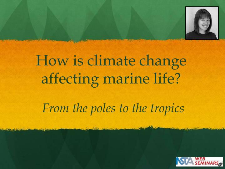 How is climate change affecting marine life?