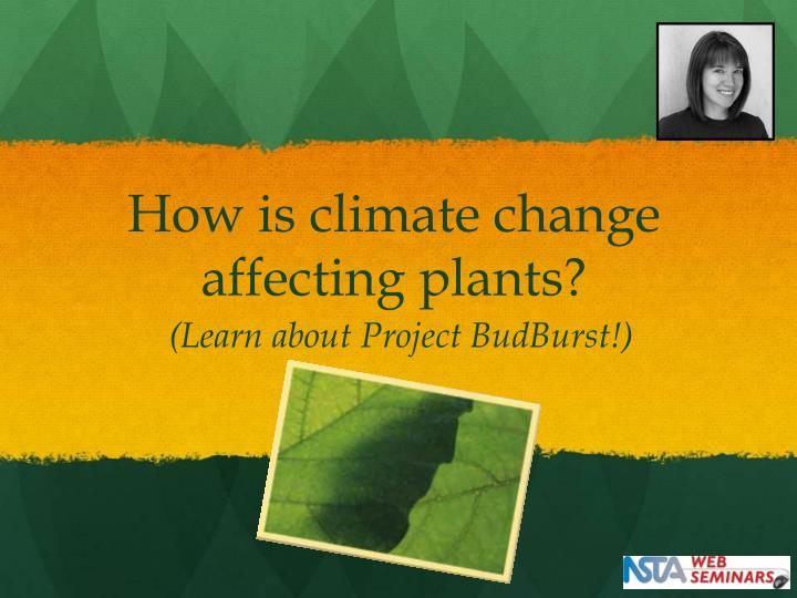 How is climate change affecting plants?
