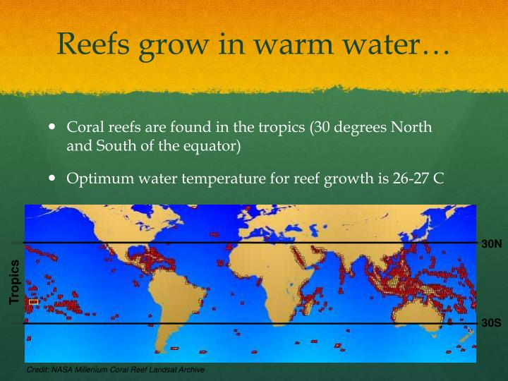Reefs grow in warm water…
