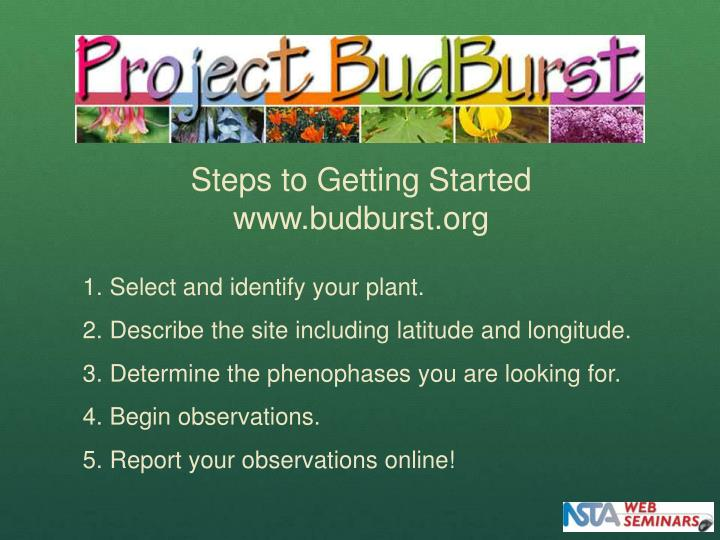 Steps to Getting Started www.budburst.org