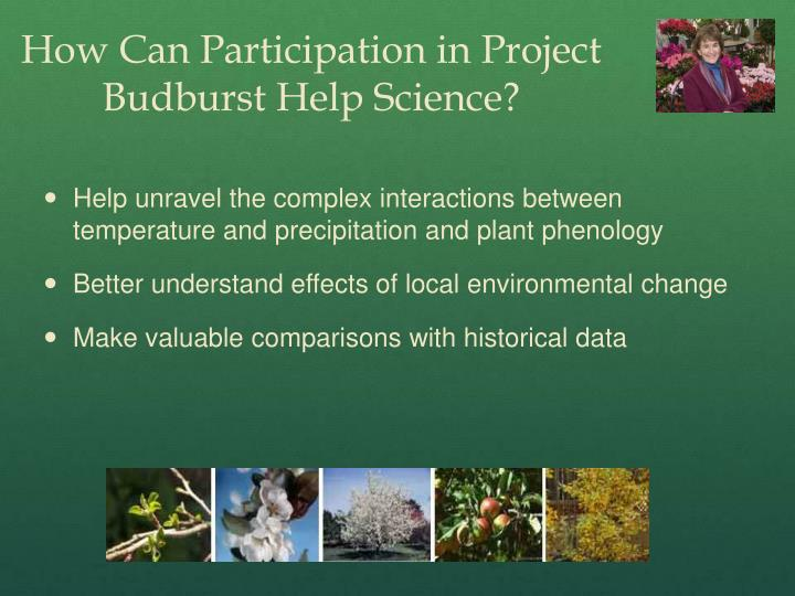 How Can Participation in Project Budburst Help Science?