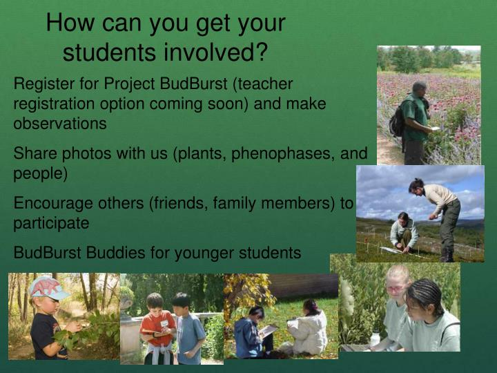 How can you get your students involved?