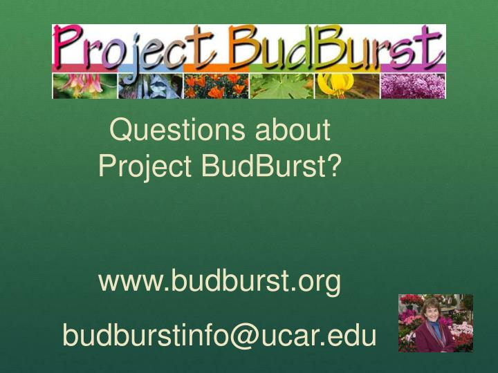 Questions about Project BudBurst?