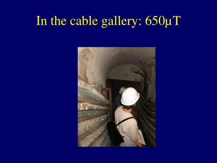 In the cable gallery: 650µT