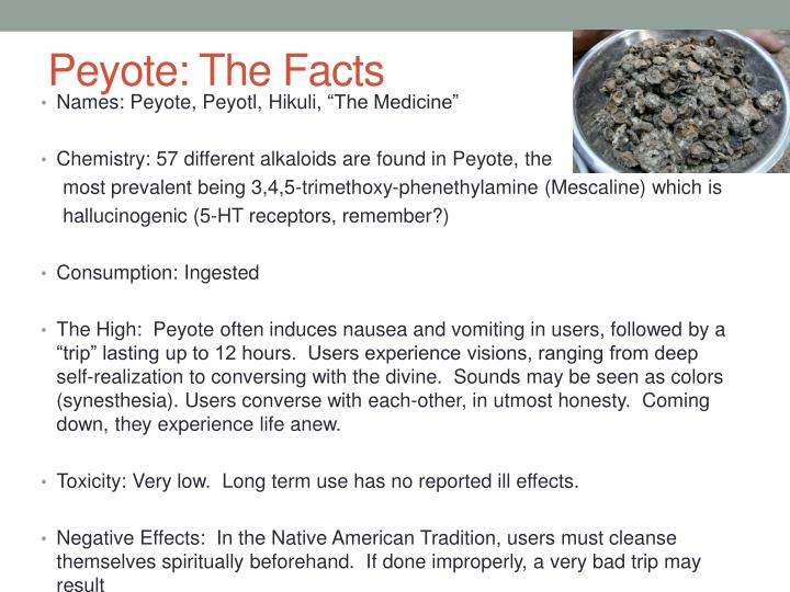 Peyote: The Facts