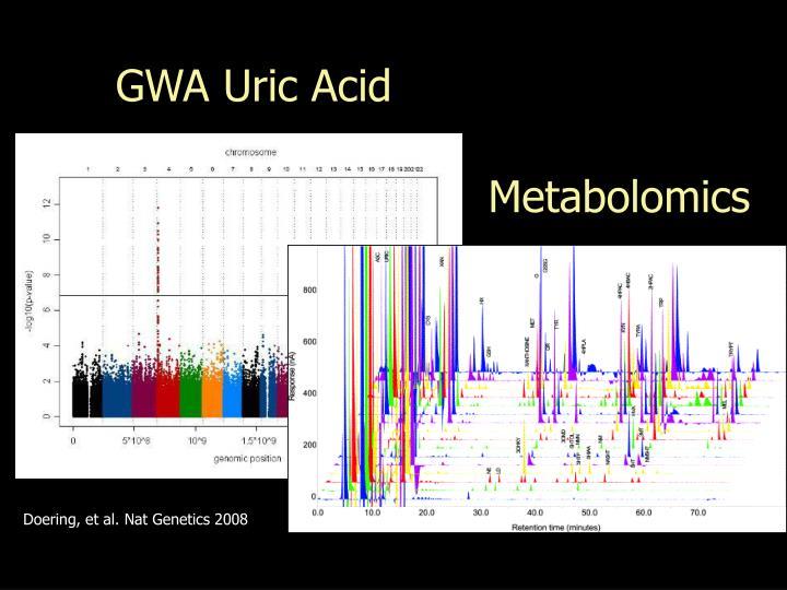 GWA Uric Acid