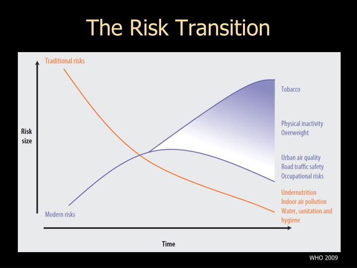The Risk Transition