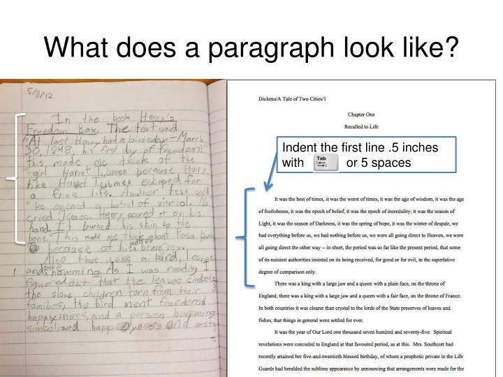 What does a paragraph look like?