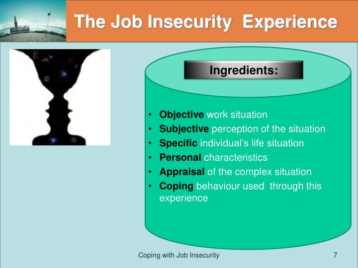 The Job Insecurity  Experience