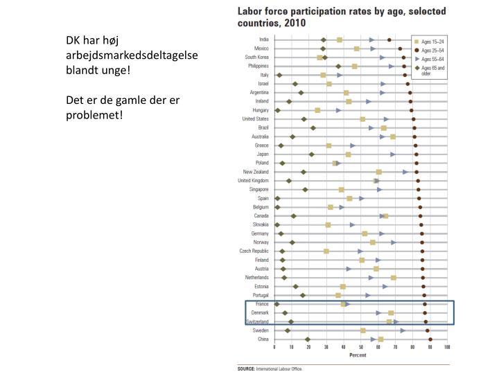 DK har høj arbejdsmarkedsdeltagelse blandt unge!