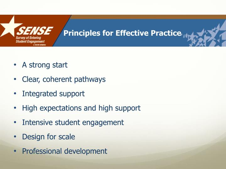 Principles for Effective Practice