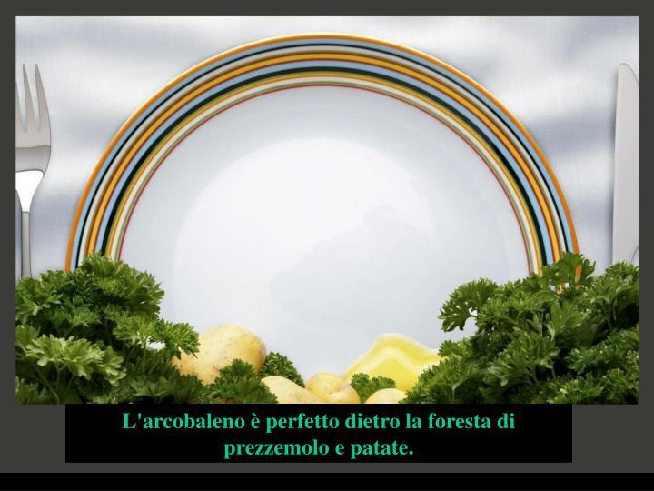 L'arcobaleno è perfetto dietro la foresta di prezzemolo e patate.