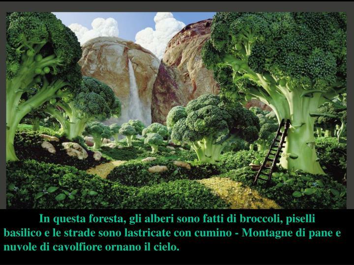 In questa foresta, gli alberi sono fatti di broccoli, piselli basilico e le strade sono lastricate con cumino - Montagne di pane e  nuvole di cavolfiore ornano il cielo.