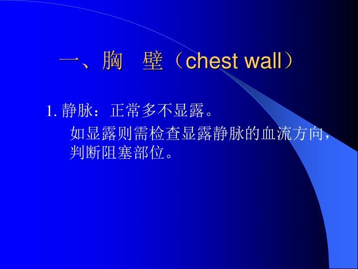 一、胸   壁(