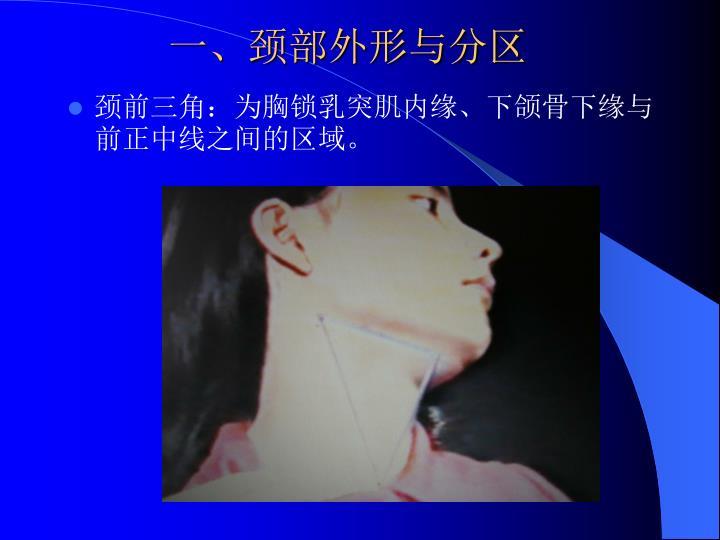 一、颈部外形与分区