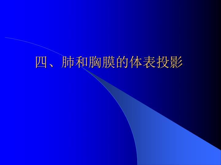 四、肺和胸膜的体表投影