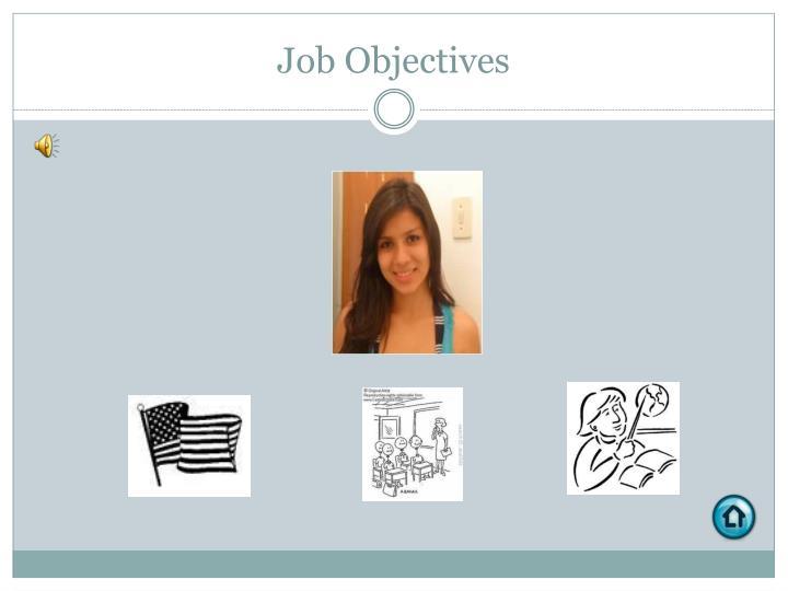 Job Objectives