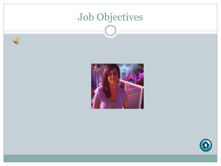Job Objectives