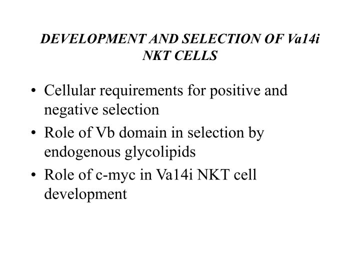 DEVELOPMENT AND SELECTION OF Va14i NKT CELLS