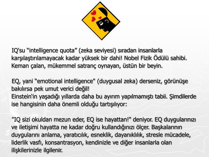 """IQ'su """"intelligence quota"""" (zeka seviyesi) sıradan insanlarla karşılaştırılamayacak kadar yüksek bir dahi! Nobel Fizik Ödülü sahibi. Keman çalan, mükemmel satranç oynayan, üstün bir beyin."""
