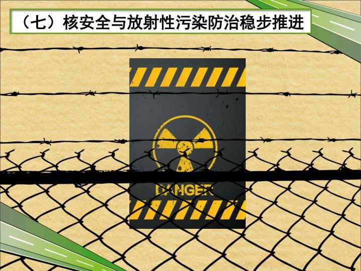 (七)核安全与放射性污染防治稳步推进