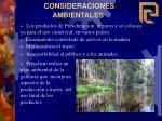 consideraciones ambientales