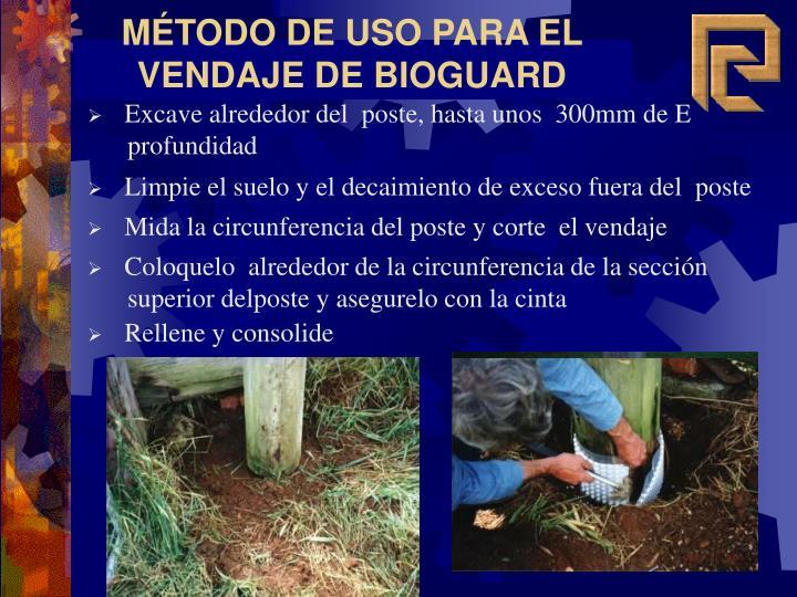 Limpie el suelo y el decaimiento de exceso fuera del  poste