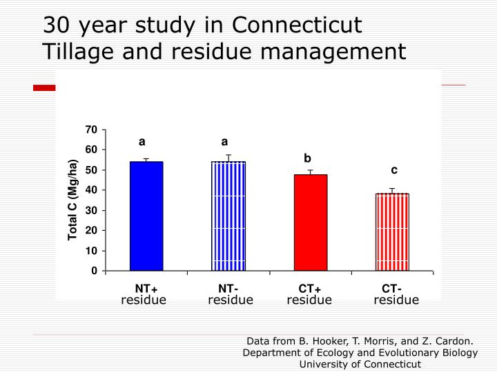 30 year study in Connecticut