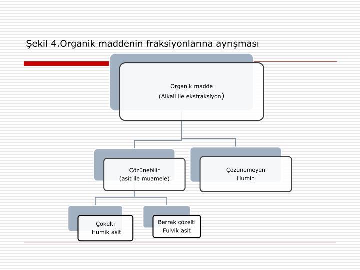 Şekil 4.Organik maddenin fraksiyonlarına ayrışması
