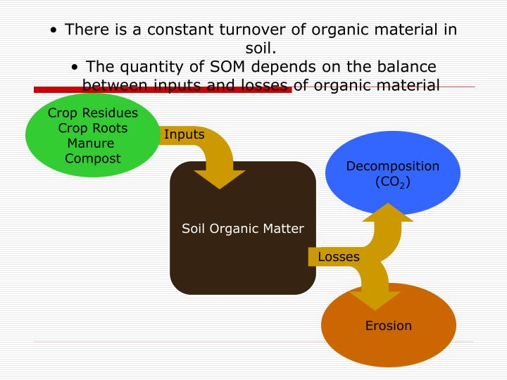 There is a constant turnover of organic material in soil.