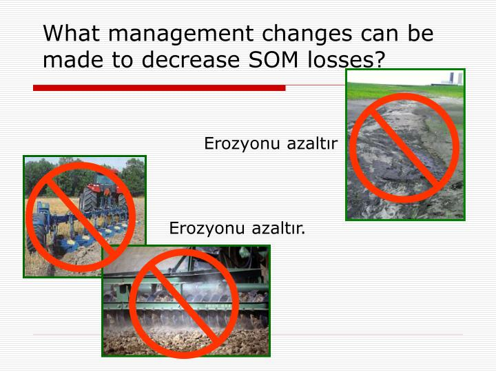What management changes can be made to decrease SOM losses?