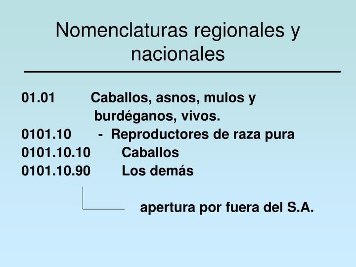 Nomenclaturas regionales y nacionales