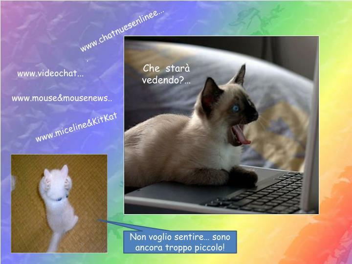 www.chatnuesenlinee....