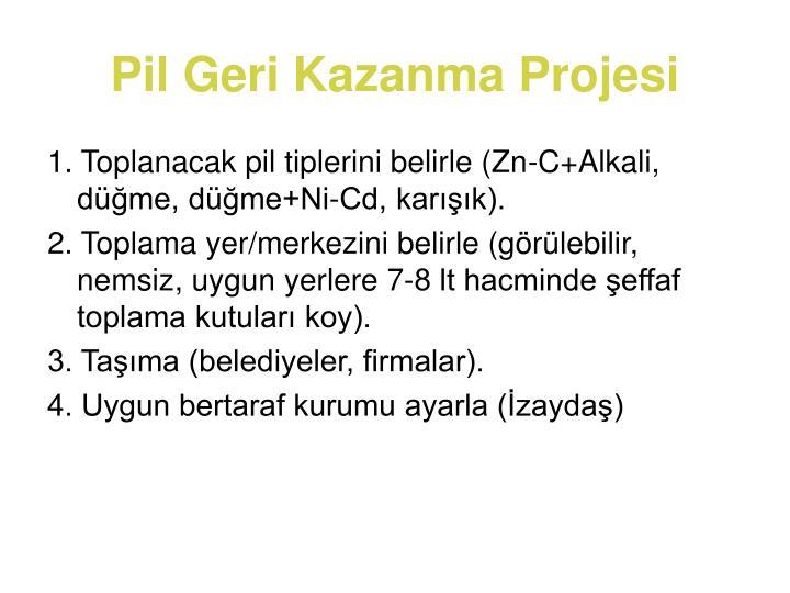 Pil Geri Kazanma Projesi